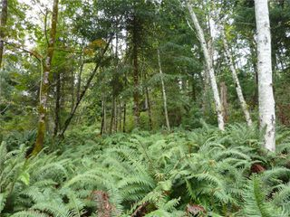 SL 10 in Fir Crest Acres!  A 2.02 acre fully serviced lot, located near the east end of the subdivision.