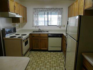 Photo 5: 402 1520 VIDAL Street: White Rock Home for sale ()  : MLS®# F1406793