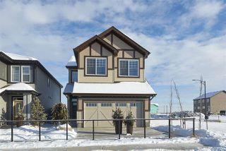 Photo 13: 2969 CHOKECHERRY Common in Edmonton: Zone 53 House for sale : MLS®# E4221176