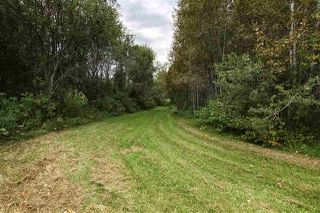 Photo 31: 52423 RGE RD 20: Rural Parkland County House for sale : MLS®# E4181283