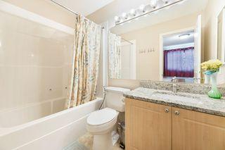 Photo 28: 78 NAPLES Way: St. Albert House for sale : MLS®# E4186025