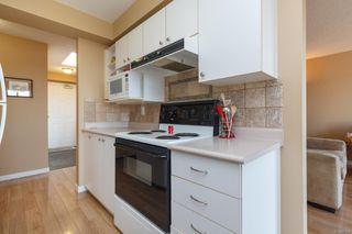 Photo 19: 412 545 Manchester Rd in : Vi Burnside Condo Apartment for sale (Victoria)  : MLS®# 851732