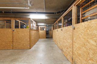 Photo 38: 412 545 Manchester Rd in : Vi Burnside Condo Apartment for sale (Victoria)  : MLS®# 851732