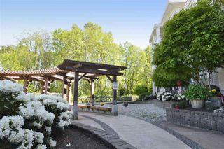 "Photo 21: 104 15428 31 Avenue in Surrey: Grandview Surrey Condo for sale in ""HEADWATERS"" (South Surrey White Rock)  : MLS®# R2525581"