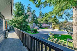 Photo 14: 935 EDEN Place in Delta: Tsawwassen East House for sale (Tsawwassen)  : MLS®# R2442067