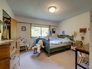 Photo 19: 3378 BEACH Avenue: Roberts Creek House for sale (Sunshine Coast)  : MLS®# R2474296