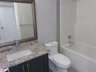 Photo 9: 5739 176 Avenue NW in Edmonton: Zone 03 House for sale : MLS®# E4174375