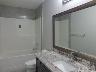 Photo 22: 5739 176 Avenue NW in Edmonton: Zone 03 House for sale : MLS®# E4174375