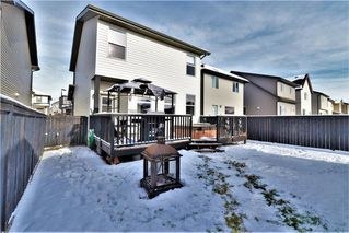 Photo 28: 177 SKYVIEW  SPRINGS Crescent NE in Calgary: Skyview Ranch Detached for sale : MLS®# C4275146