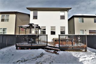 Photo 31: 177 SKYVIEW  SPRINGS Crescent NE in Calgary: Skyview Ranch Detached for sale : MLS®# C4275146