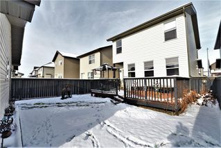 Photo 29: 177 SKYVIEW  SPRINGS Crescent NE in Calgary: Skyview Ranch Detached for sale : MLS®# C4275146