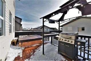 Photo 32: 177 SKYVIEW  SPRINGS Crescent NE in Calgary: Skyview Ranch Detached for sale : MLS®# C4275146