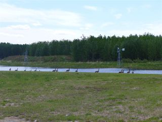Photo 11: 5 3410 Ste Anne Trail: Rural Lac Ste. Anne County Rural Land/Vacant Lot for sale : MLS®# E4191158