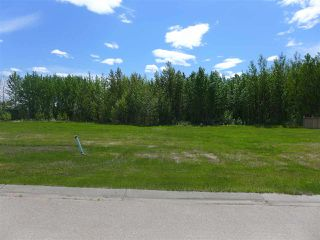 Photo 3: 5 3410 Ste Anne Trail: Rural Lac Ste. Anne County Rural Land/Vacant Lot for sale : MLS®# E4191158
