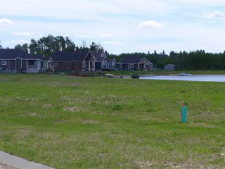Photo 8: 5 3410 Ste Anne Trail: Rural Lac Ste. Anne County Rural Land/Vacant Lot for sale : MLS®# E4191158