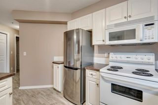Photo 6: 205 3912 STANLEY Road SW in Calgary: Parkhill Apartment for sale : MLS®# A1033808