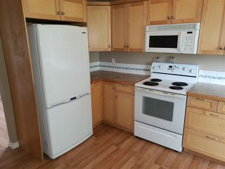 Photo 5: 4305 40 Avenue: Stony Plain House for sale : MLS®# E4170231