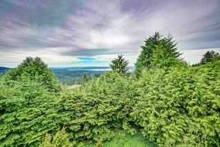 Photo 4: 573 BALLANTREE Road in West Vancouver: Glenmore House for sale : MLS®# R2469173