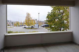 Photo 15: 115 4450 McCrae Avenue NW in Edmonton: Zone 27 Condo for sale : MLS®# E4218219