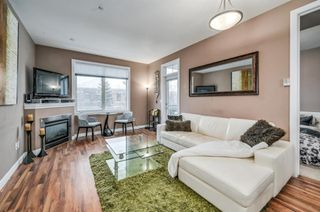 Photo 4: 206 303 19 Avenue SW in Calgary: Mission Apartment for sale : MLS®# A1052930