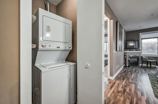 Photo 19: 206 303 19 Avenue SW in Calgary: Mission Apartment for sale : MLS®# A1052930