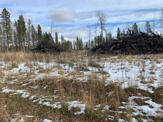 Photo 9: TWP RD 290 WEST OF BOTTREL: Cochrane Land for sale : MLS®# A1051910