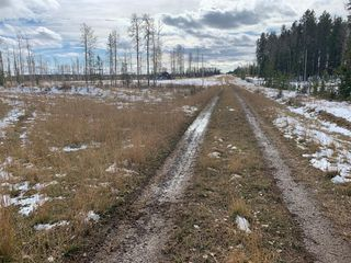 Photo 13: TWP RD 290 WEST OF BOTTREL: Cochrane Land for sale : MLS®# A1051910