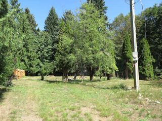 Photo 5: 4774 Lewis Rd in CAMPBELL RIVER: CR Campbell River South Land for sale (Campbell River)  : MLS®# 822673
