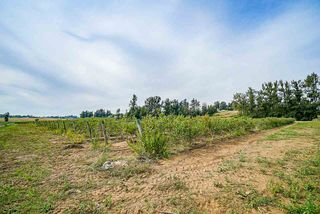 Photo 11: 625 BRADNER Road in Abbotsford: Aberdeen House for sale : MLS®# R2397446
