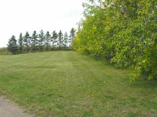 Photo 28: 56206 RR83: Rural St. Paul County House for sale : MLS®# E4173173