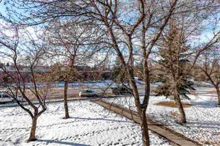 Photo 20: 203 340 WOODBRIDGE Way: Sherwood Park Condo for sale : MLS®# E4183272