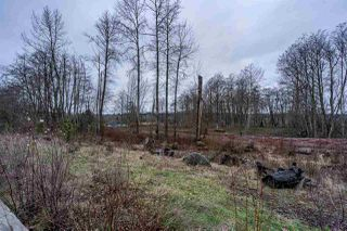 Photo 39: 2119 164A Street in Surrey: Grandview Surrey House for sale (South Surrey White Rock)  : MLS®# R2527962