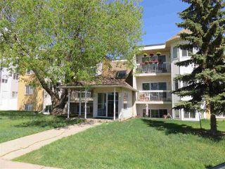 Main Photo: 203 11440 40 Avenue in Edmonton: Zone 16 Condo for sale : MLS®# E4172104