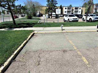 Photo 21: 203 11440 40 Avenue in Edmonton: Zone 16 Condo for sale : MLS®# E4172104