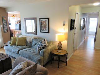 Photo 7: 203 11440 40 Avenue in Edmonton: Zone 16 Condo for sale : MLS®# E4172104