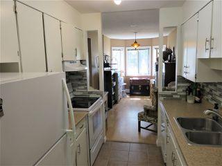 Photo 8: 203 11440 40 Avenue in Edmonton: Zone 16 Condo for sale : MLS®# E4172104