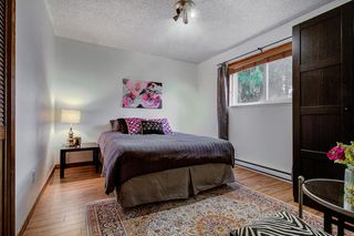 Photo 13: 21161 122 Avenue in Maple Ridge: Northwest Maple Ridge House for sale : MLS®# R2415001