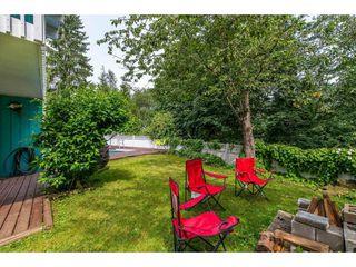 Photo 19: 34409 LABURNUM Avenue in Abbotsford: Abbotsford East House for sale : MLS®# R2416903
