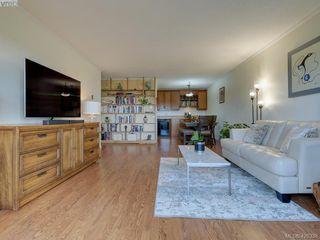 Photo 7: 303 1012 Pakington Street in VICTORIA: Vi Fairfield East Condo Apartment for sale (Victoria)  : MLS®# 426338