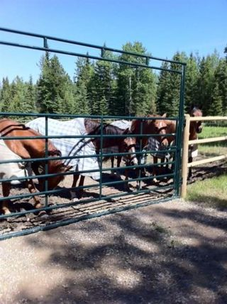Photo 1: 282155 Rge Rd 53: Cochrane Land for sale : MLS®# A1050784
