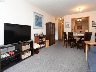 Photo 5: 105 10459 Resthaven Drive in SIDNEY: Si Sidney North-East Condo Apartment for sale (Sidney)  : MLS®# 416410