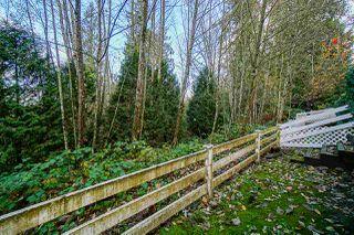 Photo 26: 29 11355 236 Street in Maple Ridge: Cottonwood MR Townhouse for sale : MLS®# R2517656