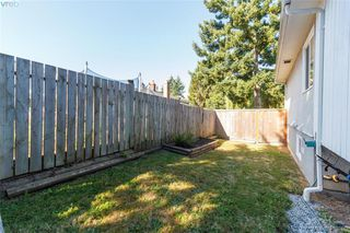 Photo 31: 3929 Braefoot Rd in VICTORIA: SE Cedar Hill House for sale (Saanich East)  : MLS®# 821071