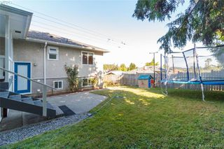 Photo 29: 3929 Braefoot Road in VICTORIA: SE Cedar Hill Single Family Detached for sale (Saanich East)  : MLS®# 413990