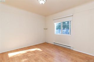 Photo 17: 3929 Braefoot Rd in VICTORIA: SE Cedar Hill Single Family Detached for sale (Saanich East)  : MLS®# 821071