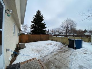 Photo 23: 1017 Cavalier Drive in Winnipeg: Crestview Residential for sale (5H)  : MLS®# 202006397