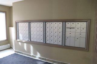 Photo 37: 302 4407 23 Street in Edmonton: Zone 30 Condo for sale : MLS®# E4198584