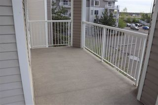 Photo 30: 302 4407 23 Street in Edmonton: Zone 30 Condo for sale : MLS®# E4198584