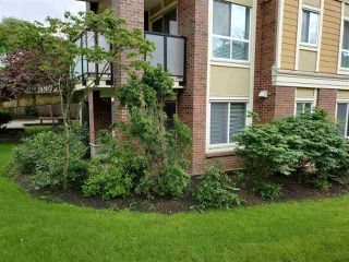 "Photo 15: 317 13883 LAUREL Drive in Surrey: Whalley Condo for sale in ""EMERALD HEIGHTS"" (North Surrey)  : MLS®# R2477039"