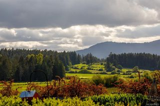 Photo 49: 1563 Mt. Newton Cross Rd in Central Saanich: CS Saanichton House for sale : MLS®# 839923